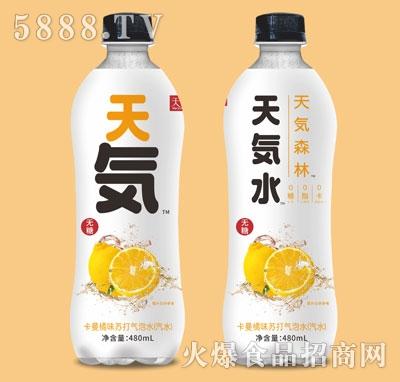 天饮源卡曼橘味苏打气泡水480ml