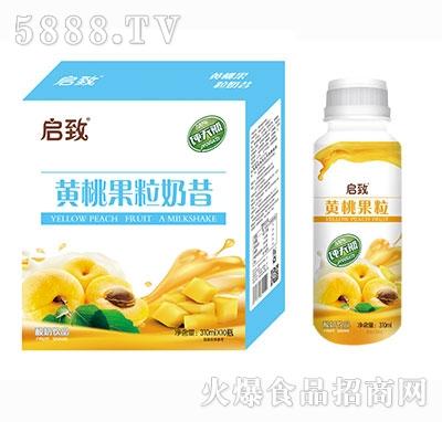 启致黄桃果粒酸奶310ml×10瓶