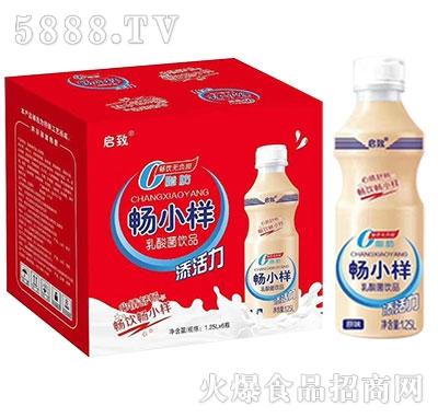 启致畅小样乳酸菌饮品原味1.25L×6瓶