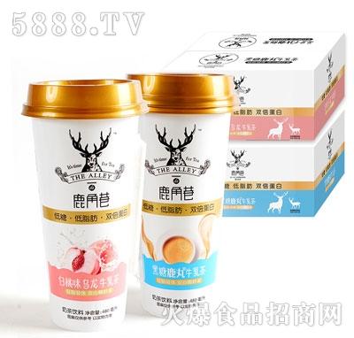 鹿角巷牛乳茶(箱)