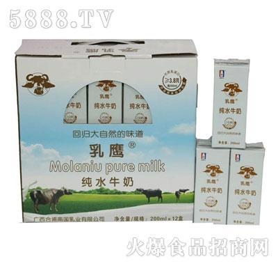 乳鹰纯水牛奶200mlX12
