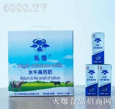 乳鹰水牛高钙奶200mlX12