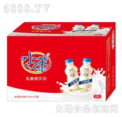 小漾乳酸菌饮品原味340mlX12
