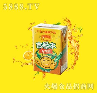 吉草本柠檬茶250ml