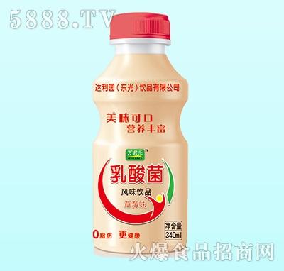 万君乐乳酸菌风味饮品草莓味340ml