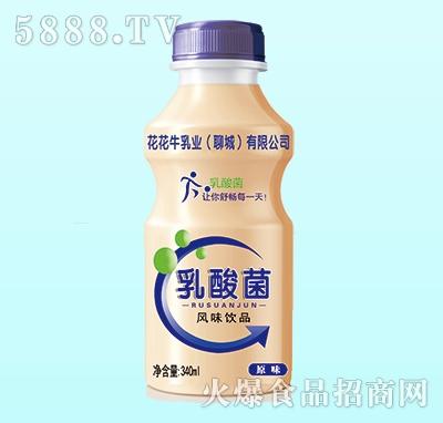 花花牛乳酸菌原味340ml(单瓶)