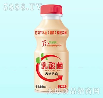 花花牛乳酸菌风味饮品草莓味340ml(单瓶)