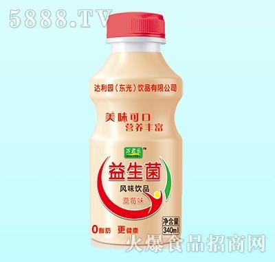万君乐益生菌乳酸菌风味饮品草莓味340ml