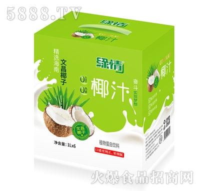 缘情椰汁植物蛋白饮料1LX6