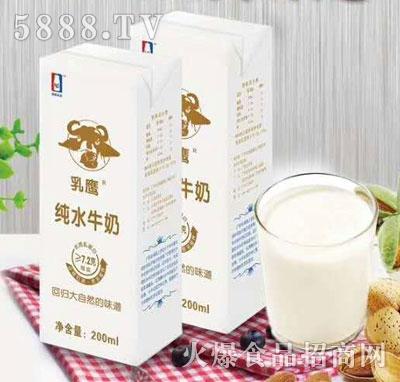 乳鹰纯水牛奶200ml(盒装)