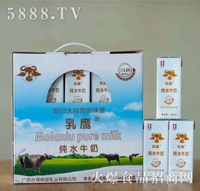 乳鹰纯水牛奶200mlX12盒