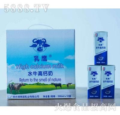 乳鹰水牛高钙奶200mlX12盒