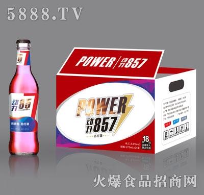 动力857苏打酒诱惑型275mlX24