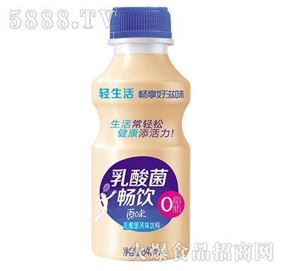 畅饮原味乳酸菌风味饮料340ml