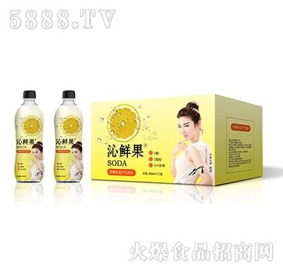 沁鲜果柠檬味苏打气泡水480ml×15瓶