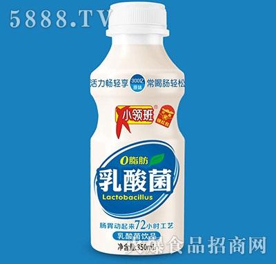 小领班乳酸菌350ml