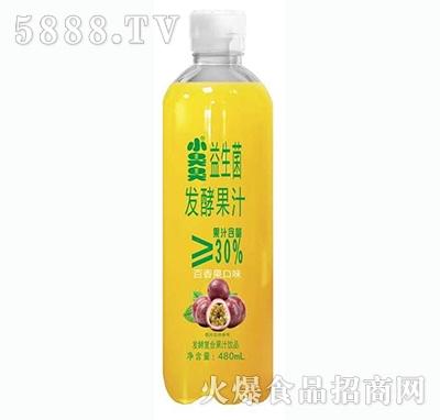 小臭臭益生菌发酵复合果汁百香果味480ml