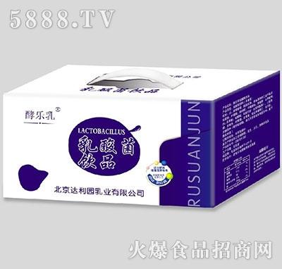 酵乐乳乳酸菌箱