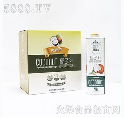 加满多椰子汁植物蛋白饮料956mlx6瓶