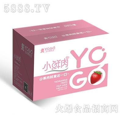 小鲜肉500mlx15瓶草莓粒果汁饮品