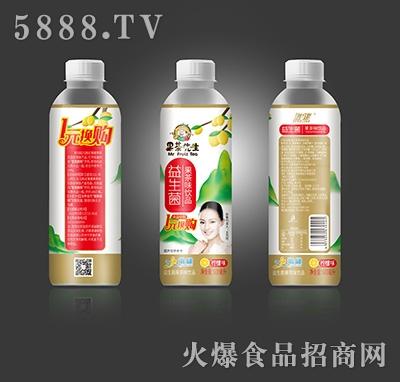 增健果茶先生益生菌果茶味饮品柠檬味600ml