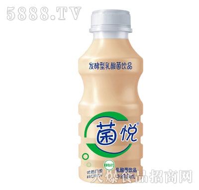 菌悦乳酸菌饮品340ml