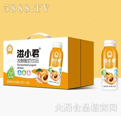 滋小君发酵酸奶黄桃果粒250mlx16