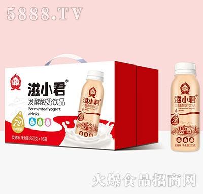 滋小君发酵酸奶250mlx16
