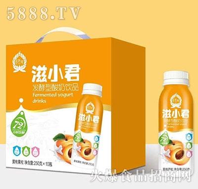 滋小君发酵酸奶黄桃果粒250mlx10