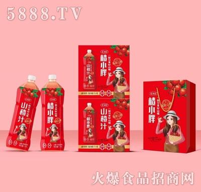 汇元红山楂汁(箱装)