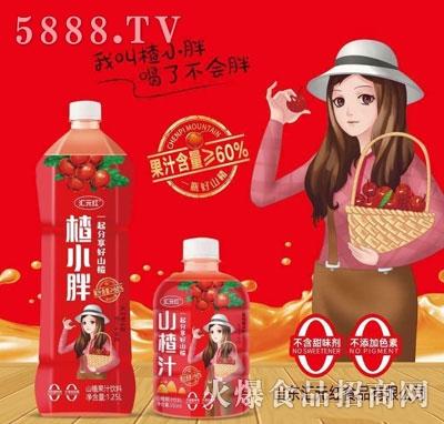 汇元红山楂汁