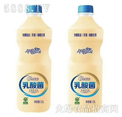 光明乳业乳酸菌饮品1.25L