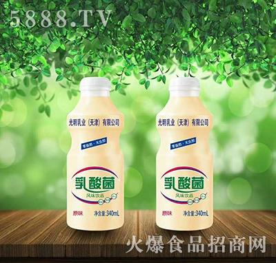 光明乳业原味乳酸菌风味饮料340ml