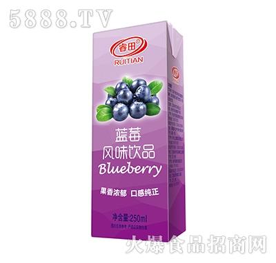 睿田蓝莓风味饮品250ml