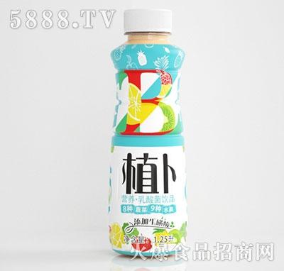 植卜营养型乳酸菌饮品1.25L