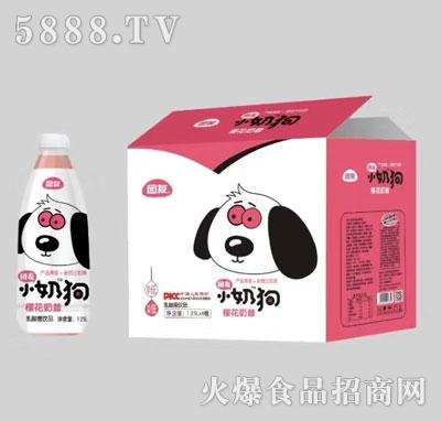 团友小奶狗樱花奶昔1.25LX6(瓶)