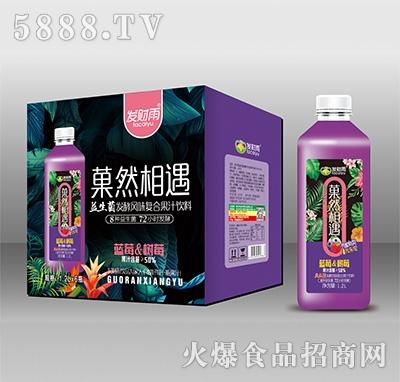 发财雨菓然相遇蓝莓葡萄益生菌发酵风味复合果汁1.2Lx6瓶