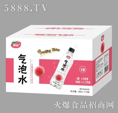 鲜绽白桃味苏打气泡水480mlX15