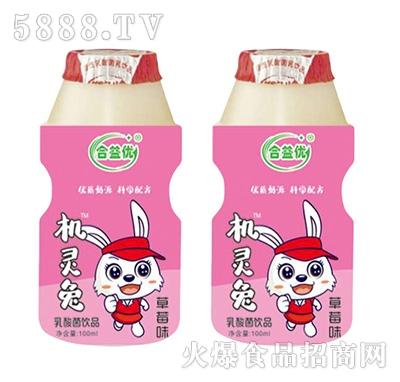合益优机灵兔乳酸菌草莓味100ml