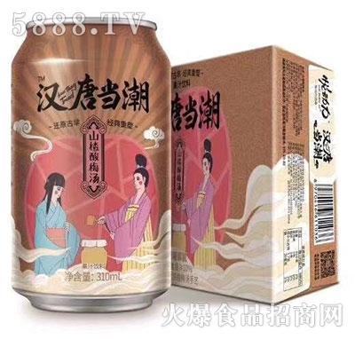 汉唐当潮山楂酸梅汤果汁310ml