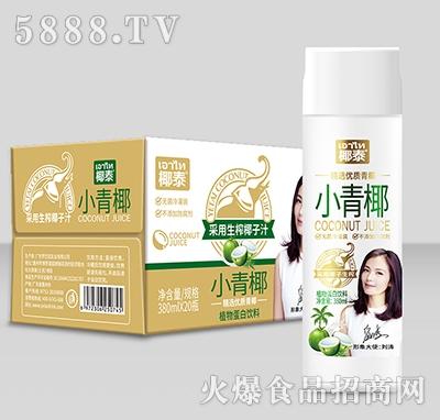 椰泰小青椰椰子汁380mlx20