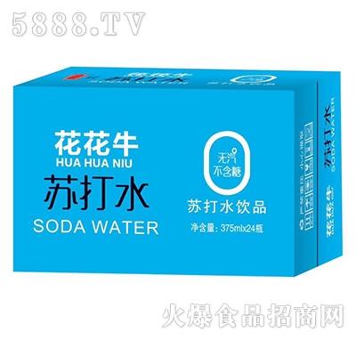 花花牛苏打水饮品375ml×24瓶