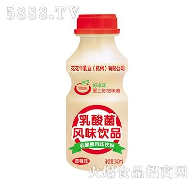 乳酸菌风味饮品草莓味340ml