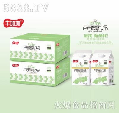 牛加加芦荟酸奶饮品458gX12