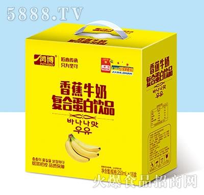 鸿博香蕉牛奶复合蛋白饮品250ml×16盒产品图