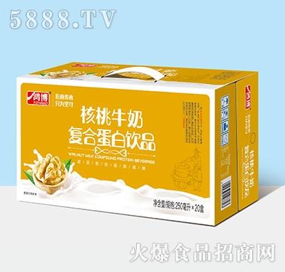 鸿博核桃牛奶复合蛋白饮料250ml×20盒产品图