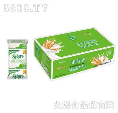 达利园企业早餐奶复合蛋白饮料250mlX16