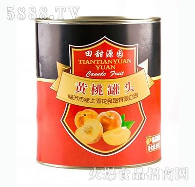 田甜源园黄桃罐头(3千克)