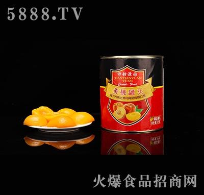 田甜源园黄桃罐头3kg