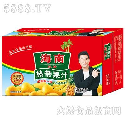 海南热带果汁饮料